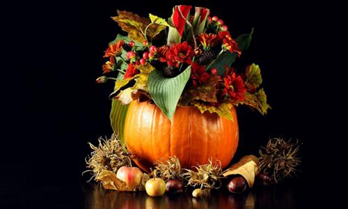 autumn-4631933_1920